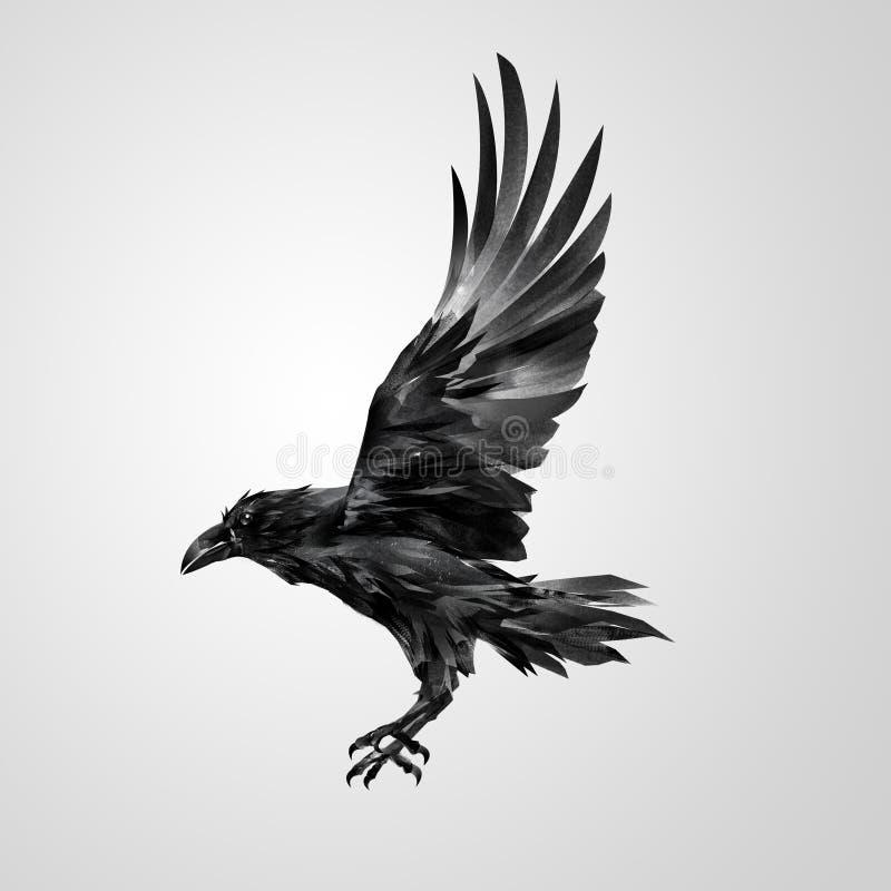 Getrokken realistische vliegende geïsoleerde kraai royalty-vrije illustratie