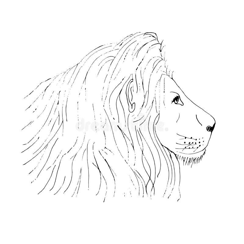 Getrokken schets van de leeuw de mannelijke hoofdinkt hand op witte achtergrond vector illustratie
