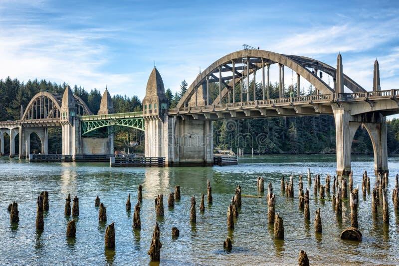 Getti un ponte sugli incroci e sul fiume con i ceppi di albero, Firenze O fotografia stock libera da diritti
