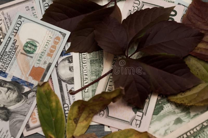 Getting Started For Business. Autumn motive stock photos