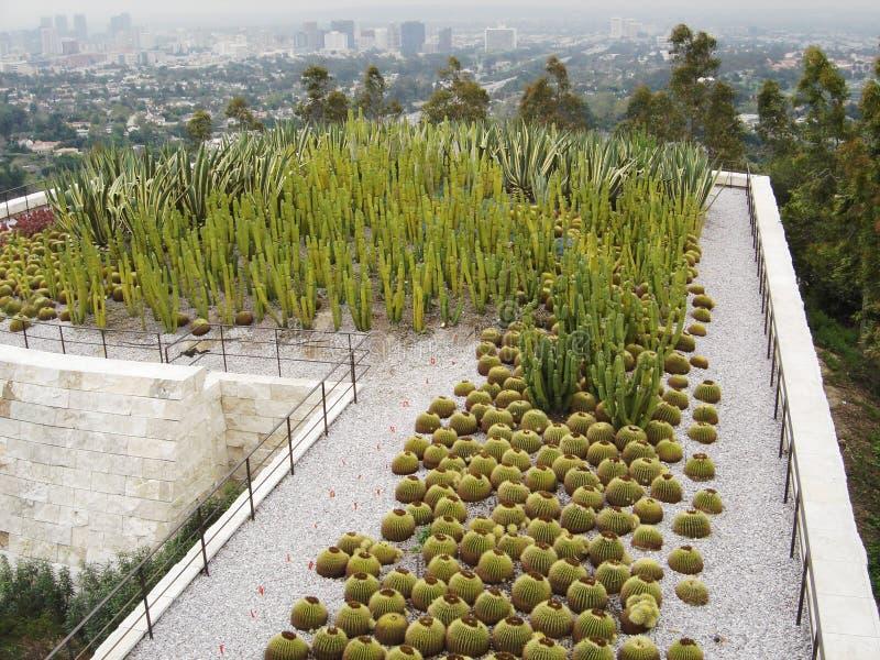 Getty Kaktus-Garten lizenzfreies stockfoto