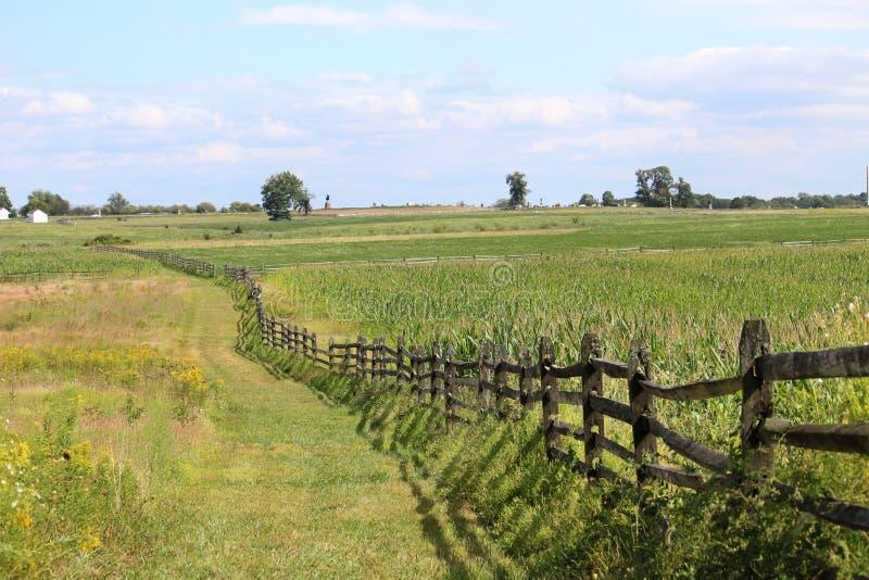 Gettysburg pole bitwy Patrzeje W kierunku Copse drzewa obraz royalty free