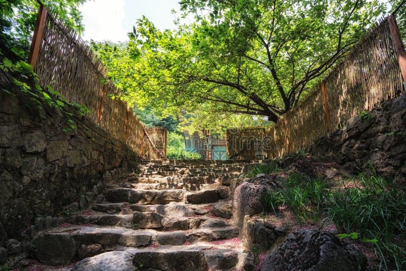Geumgangsa寺庙和台阶 库存图片