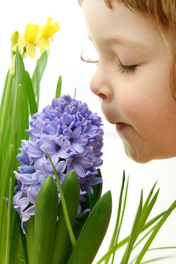 Geur van de lente stock afbeeldingen