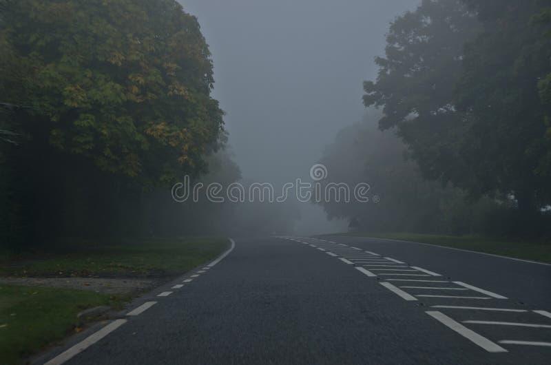 Gevaarsweg op een mistige, de herfstdag Weg door de van de de herfst bos? zon en kleur bladeren royalty-vrije stock afbeelding