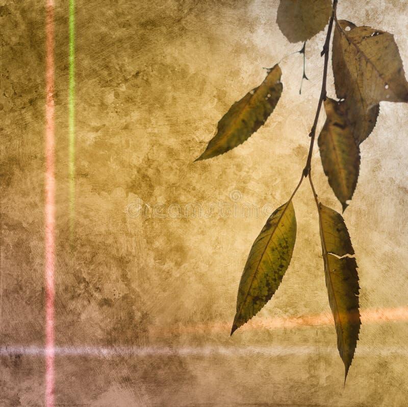 Gevallen de herfstblad op de abstracte document achtergrond royalty-vrije stock foto's
