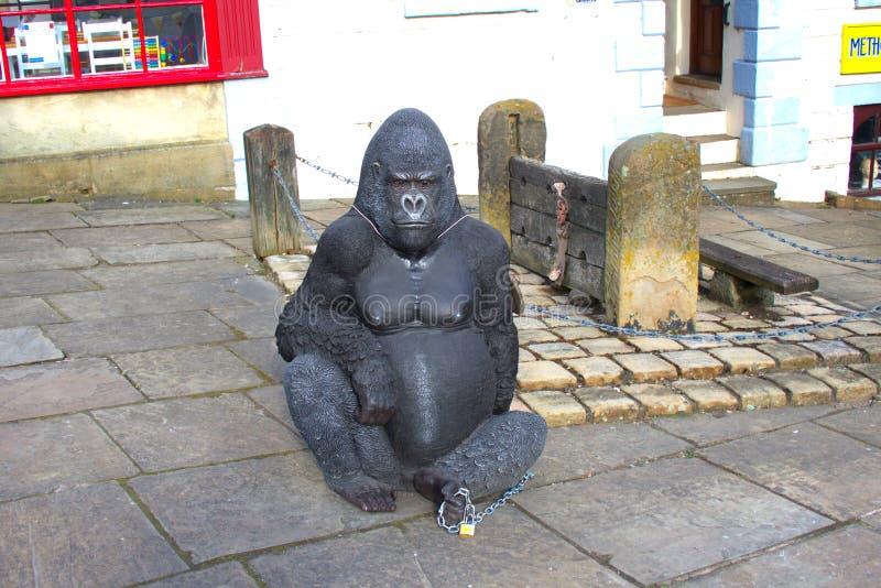 Gevangen gorilla royalty-vrije stock foto's