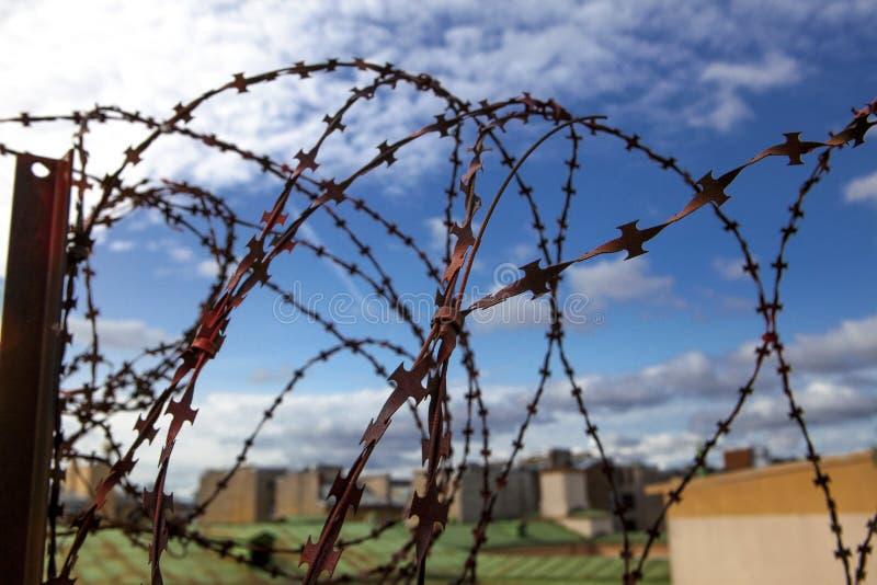 gevangenis De Abstracte illustratie van het prikkeldraad Prikkeldraad op blauwe hemelachtergrond met witte wolken Draadboom Milit stock afbeeldingen