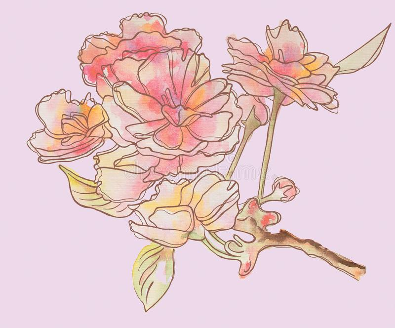 Gevoelige bloemen op de tak Roze bloemen royalty-vrije illustratie
