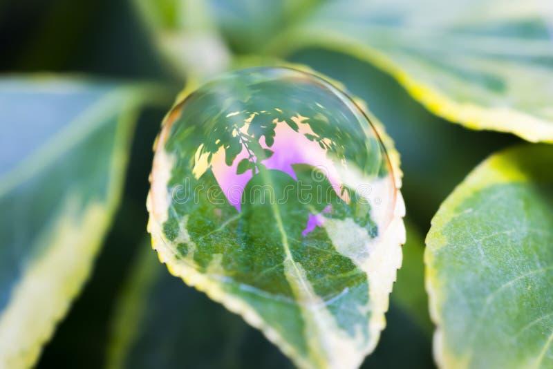 Gevoelige en breekbare schoonheid van een zeepbelkoepel evenwichtig op a royalty-vrije stock afbeeldingen