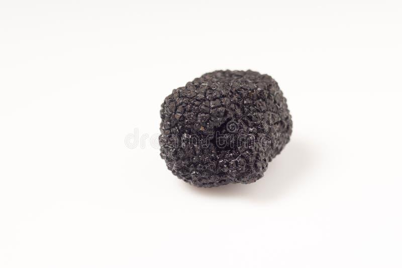 Gevoelige exclusieve zwarte truffels royalty-vrije stock afbeelding