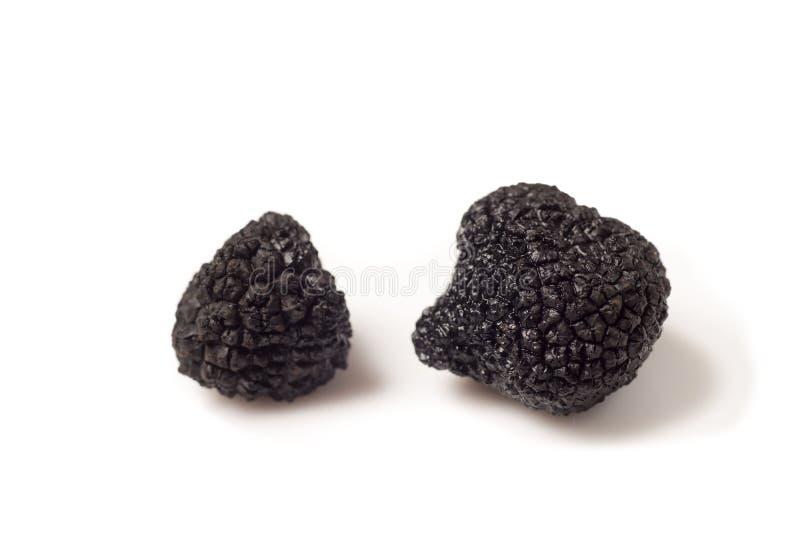 Gevoelige exclusieve zwarte truffels stock afbeeldingen