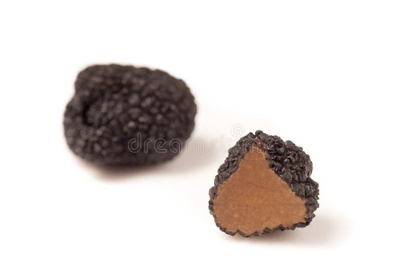 Gevoelige exclusieve zwarte truffels royalty-vrije stock foto's
