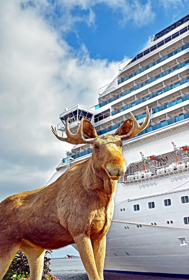 Gevulde elanden voor een cruiseschip in Kristiansand stock foto