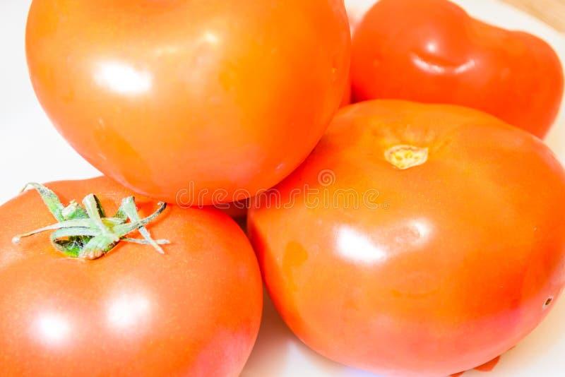 Gewächshaus-Tomate von Marmara-Region - die Türkei stockfotografie