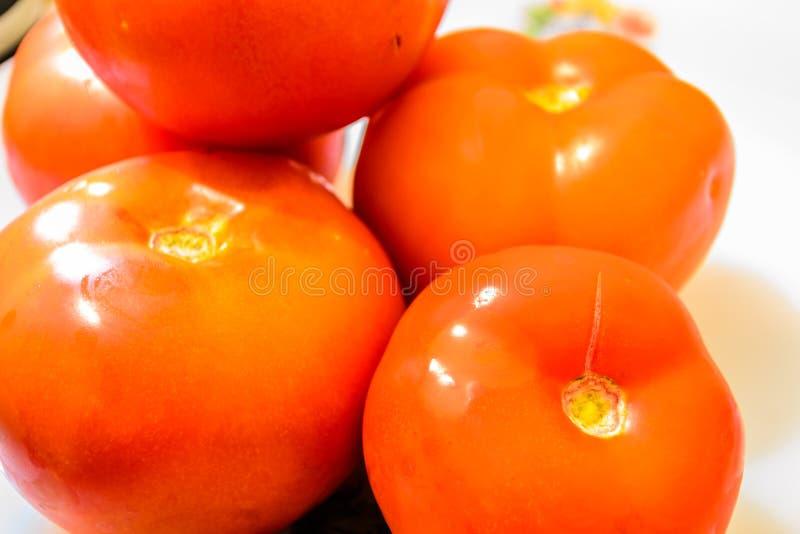 Gewächshaus-Tomate von Marmara-Region - die Türkei lizenzfreie stockfotografie