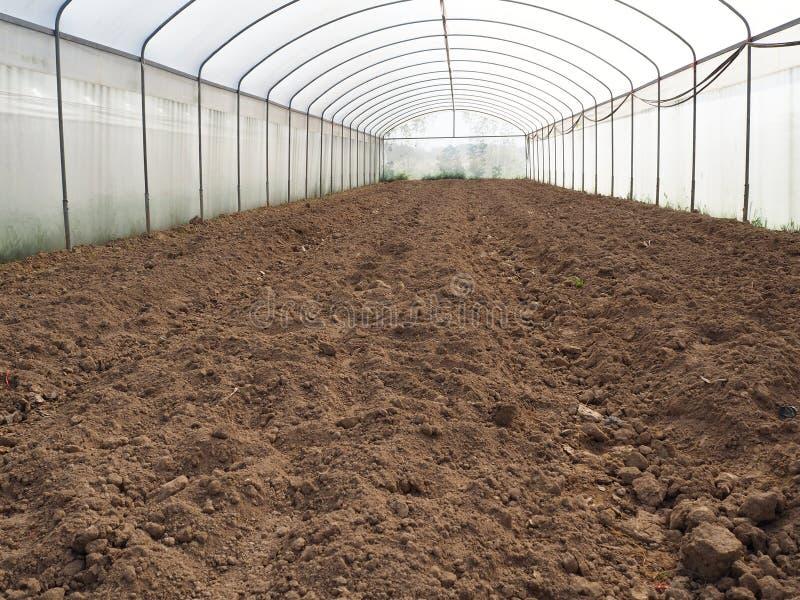 Gewächshaus, zum auf der Ernte zu warten lizenzfreie stockfotos