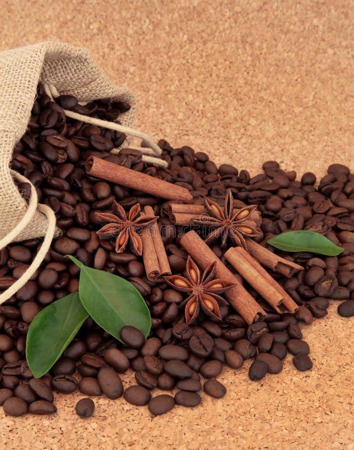 Gewürz und Kaffeebohnen lizenzfreie stockfotos