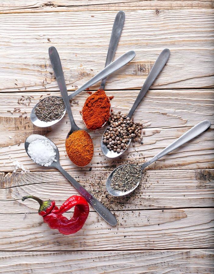 Gewürze im Löffel mit Paprika stockbild