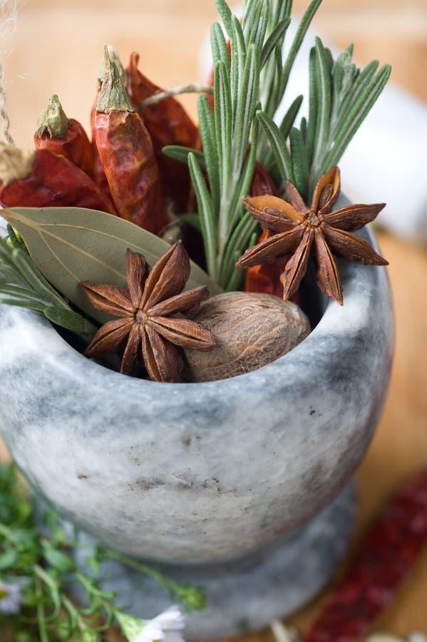 Gewürze und aromatische Kräuter lizenzfreie stockbilder