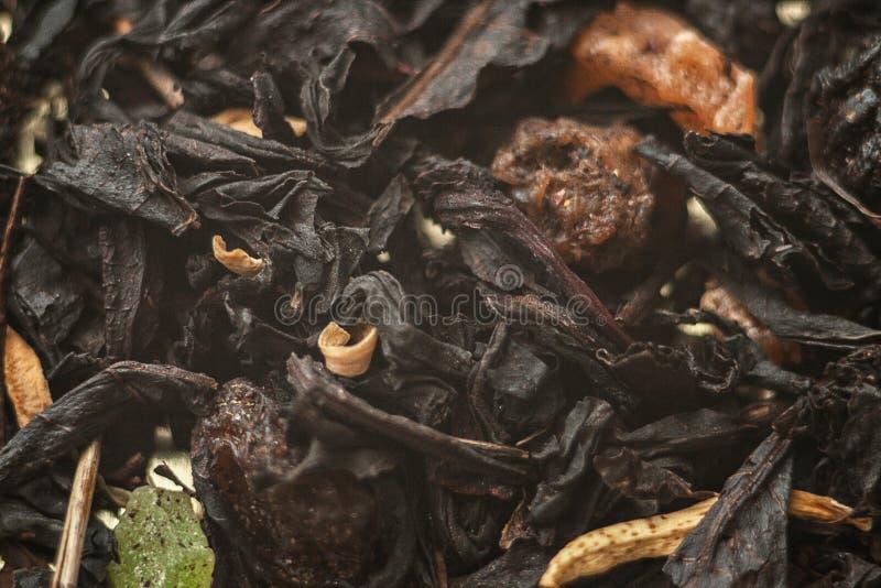 Gewürzter Tee mit Stücken lizenzfreies stockfoto