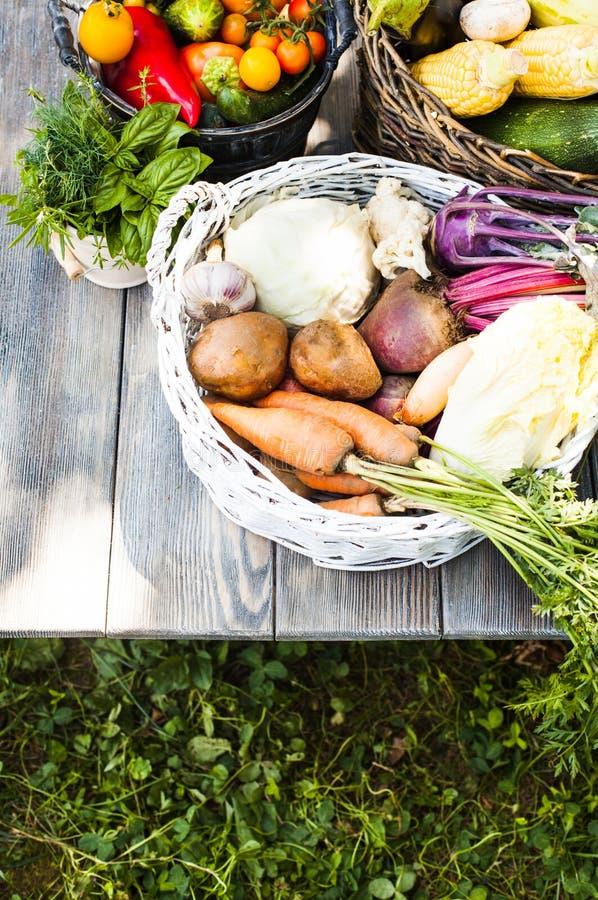 Gewas van groenten stock afbeeldingen