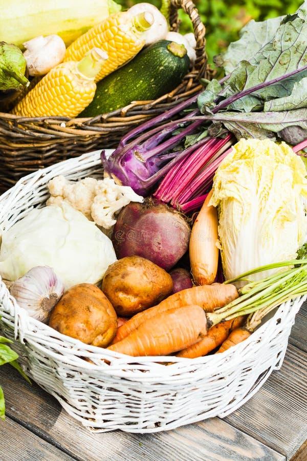 Gewas van groenten stock foto