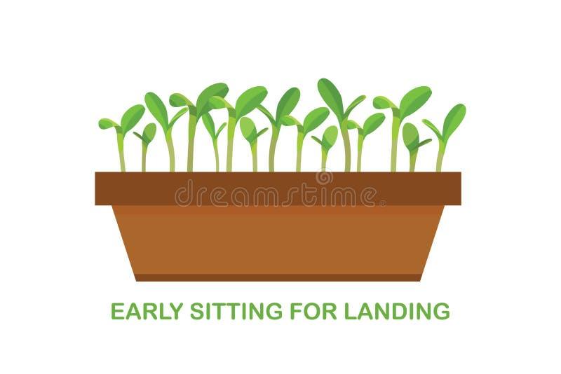 Gewassenproductie Groeiende Groenten Zaailing van tuinbouw De groei van installaties Vector royalty-vrije illustratie