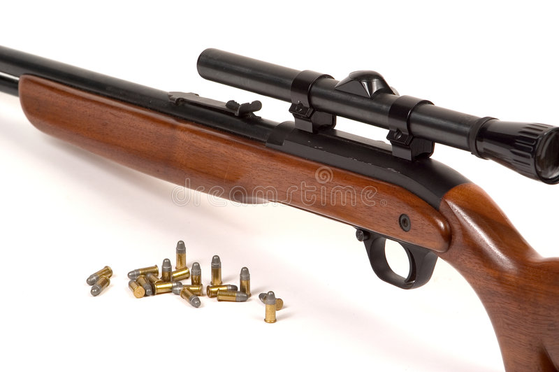 Gewehr Mit Munition Lizenzfreies Stockbild