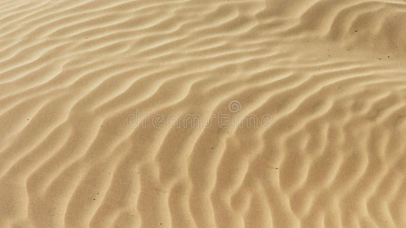 gewellte gelbe Strandsandbeschaffenheit lizenzfreie stockfotos