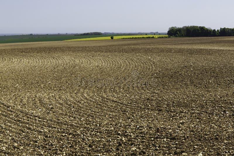 Gewellte Profile im Boden auf dem anbaufähigen Gebiet stockfotos