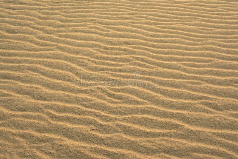 Gewellter Strandsandhintergrund lizenzfreie stockbilder
