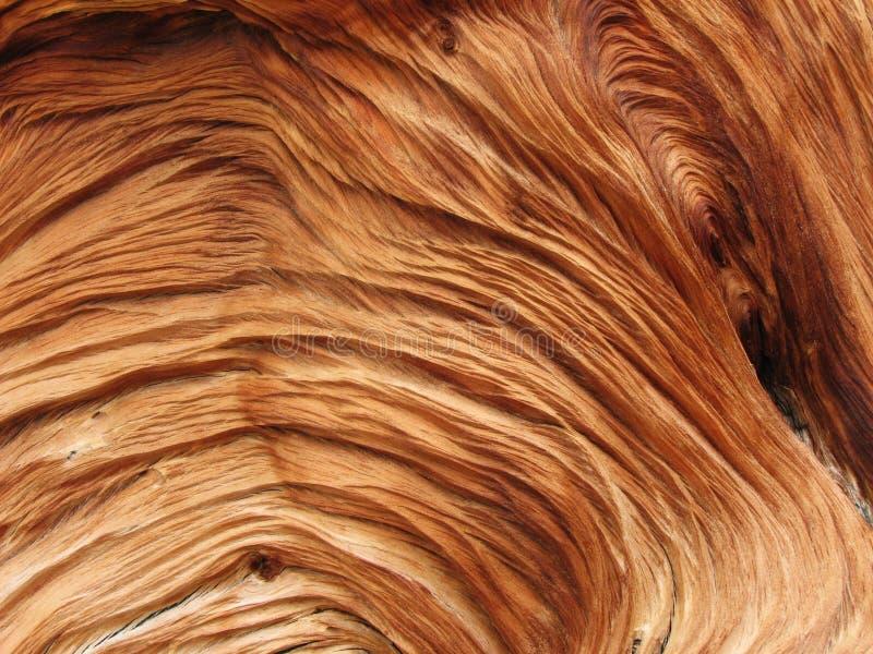 Gewervelde houten textuur stock foto