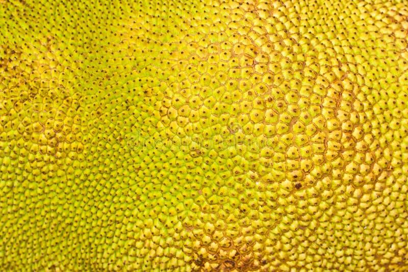 Download Geweven Huid Van Een Hefboom-Fruit Stock Foto - Afbeelding bestaande uit vezelig, geur: 29510944
