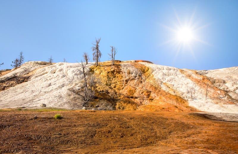 Geweven opbouw op een rots bij Mammoetdalingen royalty-vrije stock foto