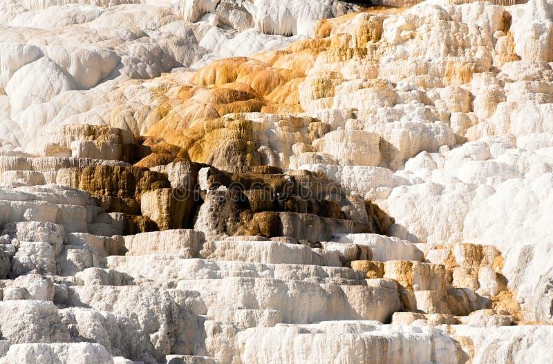 Geweven opbouw op een rots bij Mammoetdalingen royalty-vrije stock afbeelding