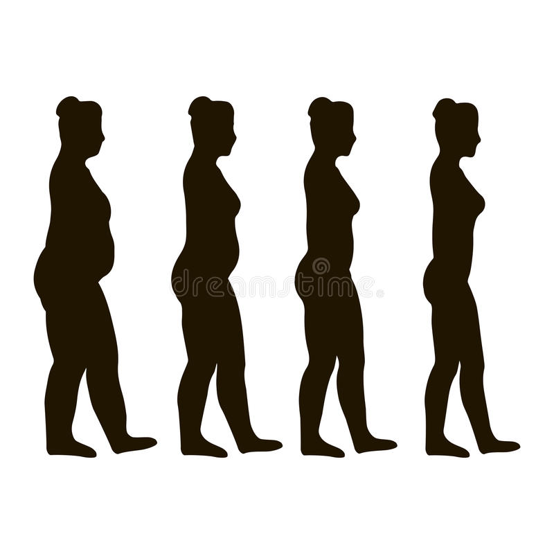 Gewichtsverlustplan lizenzfreie abbildung