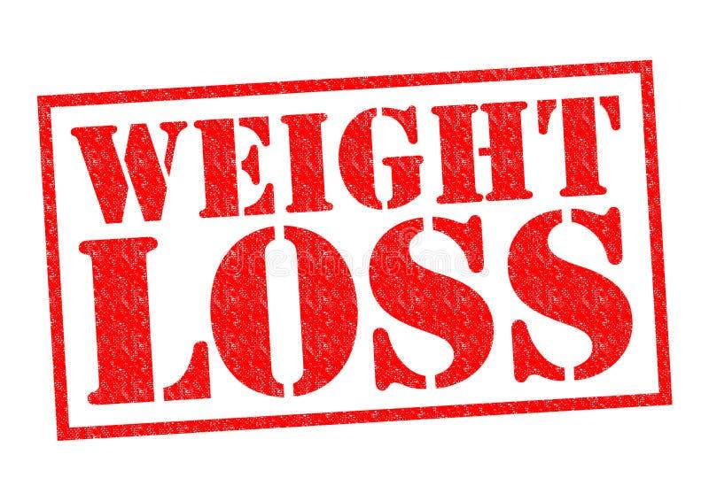 Gewichtverlust Frauentorso mit dem Maß, getrennt auf Weiß vektor abbildung