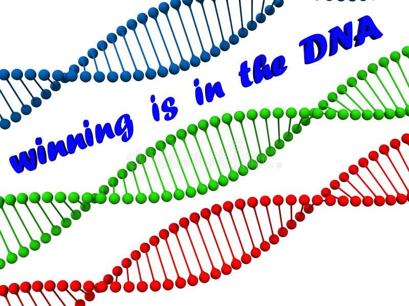 Gewinnende DNA lizenzfreie abbildung