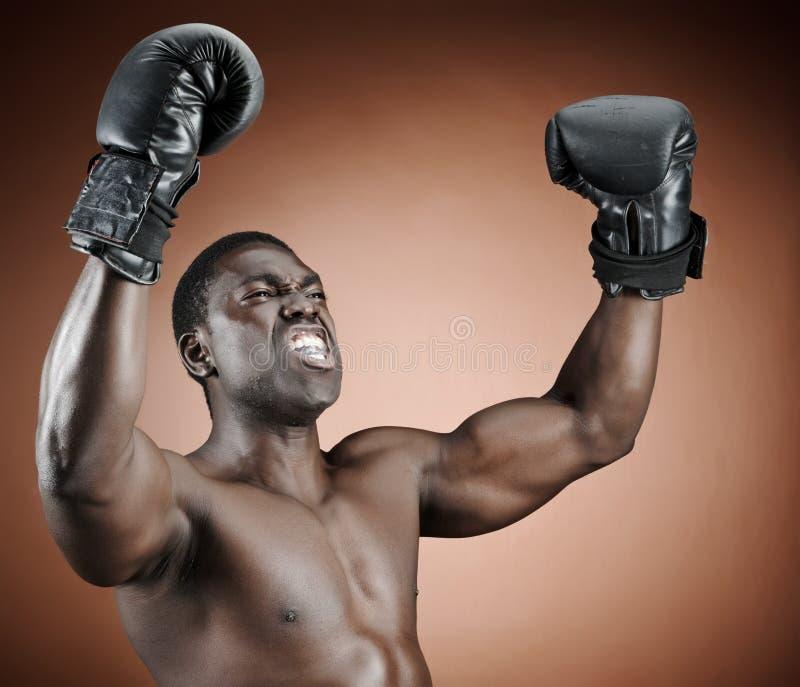Gewinnender Boxer lizenzfreies stockbild