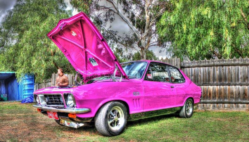 Gewohnheit gemalte siebziger Jahre Holden Torana stockbilder