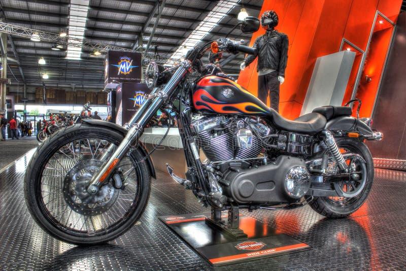 Gewohnheit gemaltes amerikanisches errichtetes Harley Davidson-Motorrad lizenzfreies stockbild