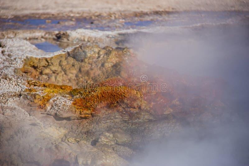 Geyser arrugginito caldo che rovescia acqua e vapore fotografie stock libere da diritti