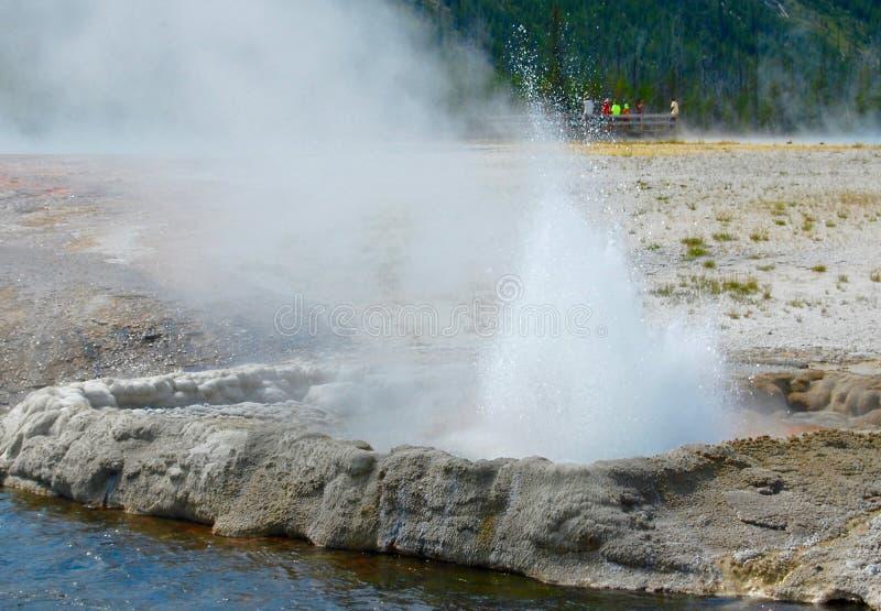 Geyser de médisance laissant outre de la vapeur au parc national de Yellowstone photographie stock libre de droits