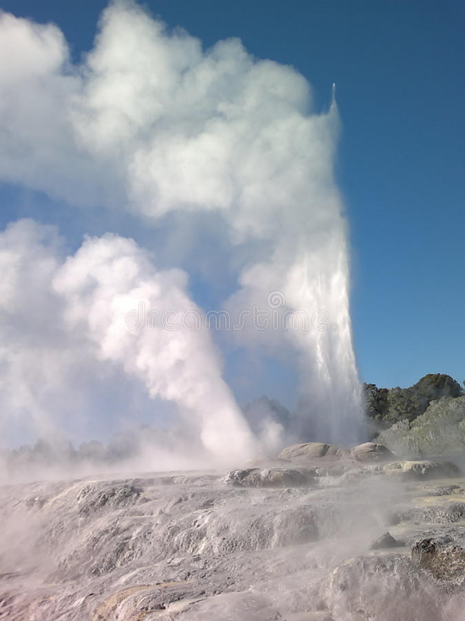 Geyser de Pohutu photos stock