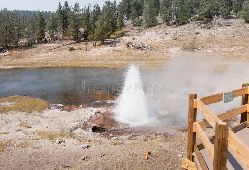 Geyser di Yellowstone Artesia immagini stock libere da diritti