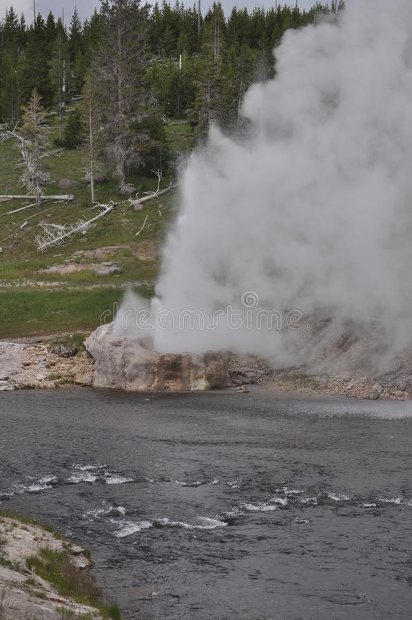 Geyser do beira-rio do parque nacional de Yellowstone imagem de stock royalty free