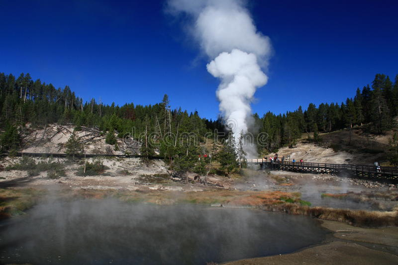 Geyser erupting in Yellowstone. National Park of the United States stock photos
