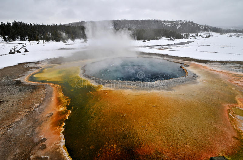Geyser i den Yellowstone nationalparken arkivbild