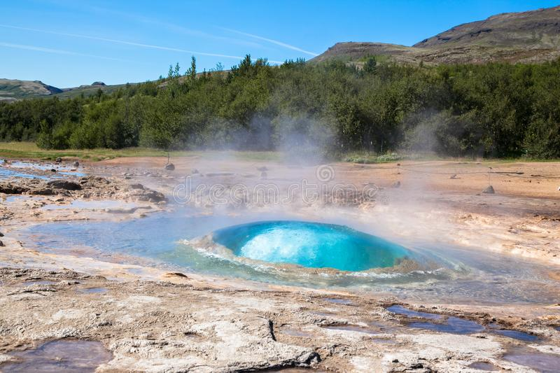 Geyser in Iceland against the blue sky and forest. A small ball of water that begins to rise royalty free stock image